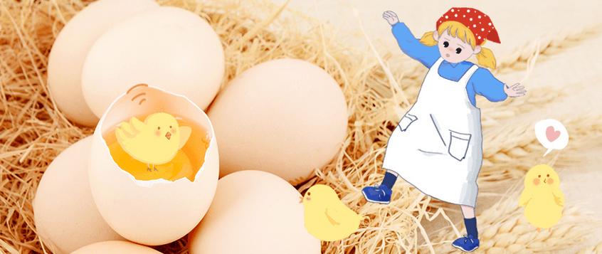 剥个鸡蛋也开心?这就是蒙特梭利教育的魅力